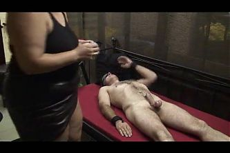 Milking the slave